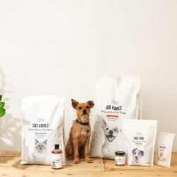 Public Goods Just Launched a Line of Healthy Pet Food and Eco-Friendly Accessories